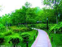 公司最喜欢的园林绿化相关服务